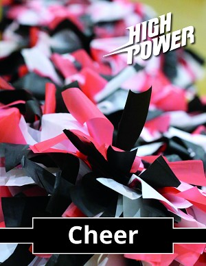 Cheer Curriculum (Digital Download)